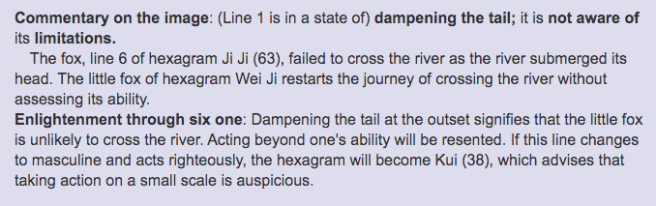 Unveiling the Mystery of the I-Ching- Hexagram Wei Ji 3.png