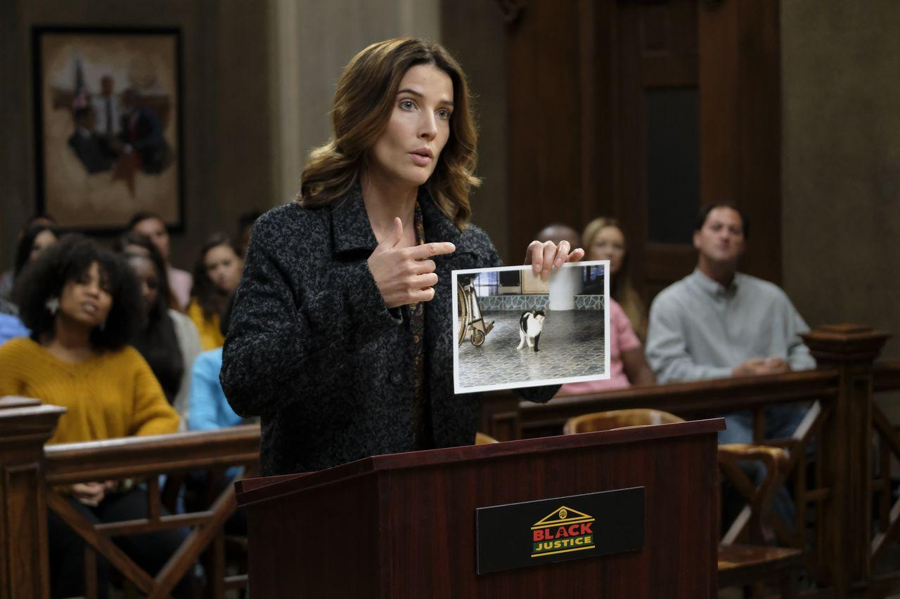 Dex Shows Judge Cat Photo
