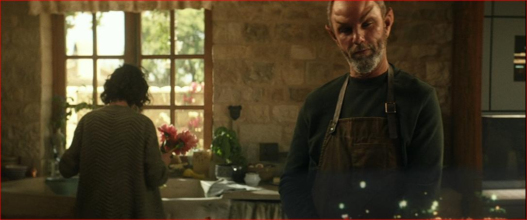 Star Trek Picard S1E1 Jamie McShane as Zhaban