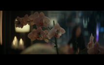 Star Trek Picard S1E1 Dahj's Orchids with Candles