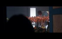 Star Trek Picard S1E6 Soji's Orchid's with Lightning