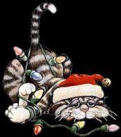 Cartoon Cat & Lights1912250