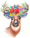 stag-1998855_960_720