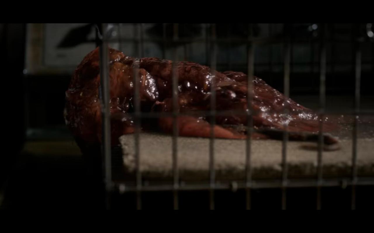 Stranger Things S3Ep2 Rat Blob in Cage
